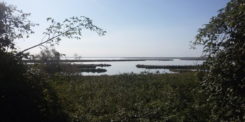 Project area: view of the lagoon from the Sile embankment