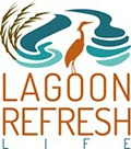 Life Lagoon Refresh